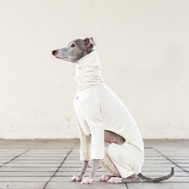 ORGANIC COTTON ROOM WEAR [WHITE]