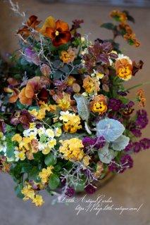アイアンの花かごギャザリング 育てるアレンジメント<br>寄せ植えギャザリング