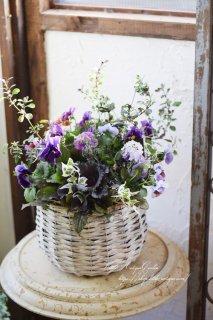 ブルーの花かごギャザリング 育てるアレンジメント<br>寄せ植えギャザリング