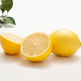 【小玉】無農薬ハウス栽培レモン  (量り売り/kg)