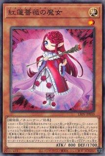 紅蓮薔薇の魔女<br>(ブラッドローズウィッチ)<br>【ノーマル】