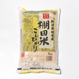 新潟県栃尾産棚田米こしひかり 5�