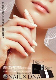 A2サイズ DNA×nailポスター 2枚セット