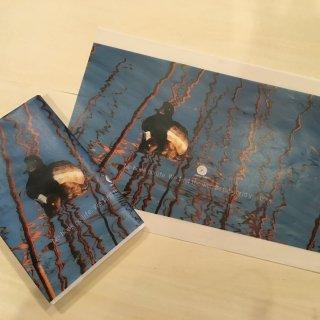 上野不忍池ブックカバー枯蓮と鴨