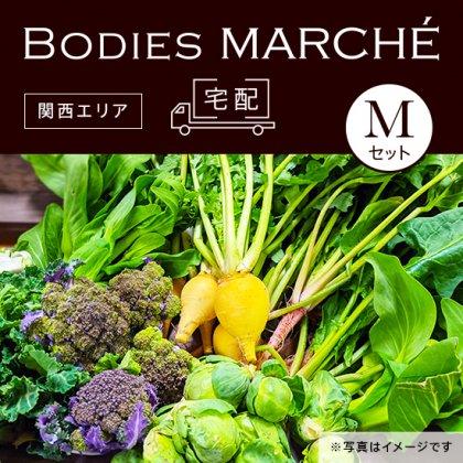 【配送先:関西】【数量限定】減農薬!茨城県産4月旬のお野菜詰め合わせ Mセット
