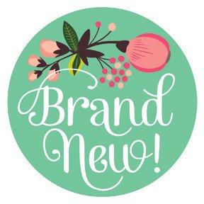 Brand new Baby Sticker ニューボーンベビーステッカー Little Artist