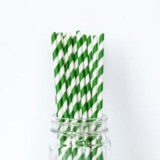 Green Striped Straws set of 24