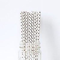 Black Mini Dot Straws set of 24