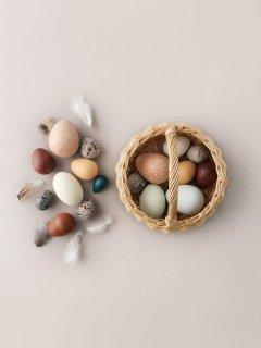 A Dozen Bird Eggs