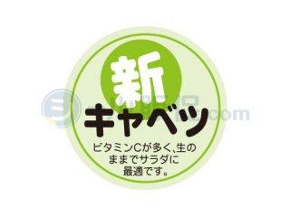 新キャベツ / シール通販・農産・ 野菜・キャベツ