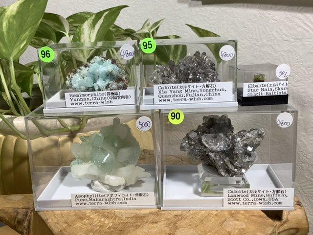 タカノさま terra-wish