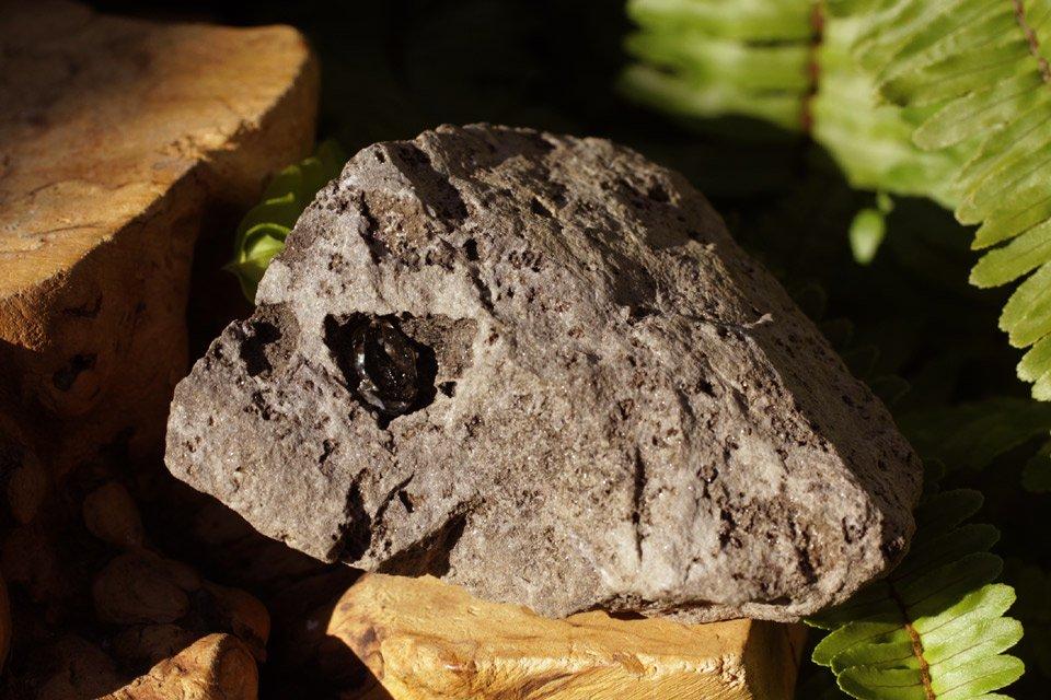母岩付きハーキマー水晶001 terra-wish