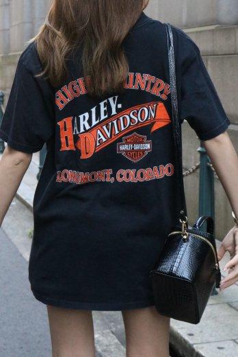 【vintage】HARLEY-DAVIDSON / 90's ColoradoーHIGH COUNTRY HD twin cam88™ print big silhouette tee