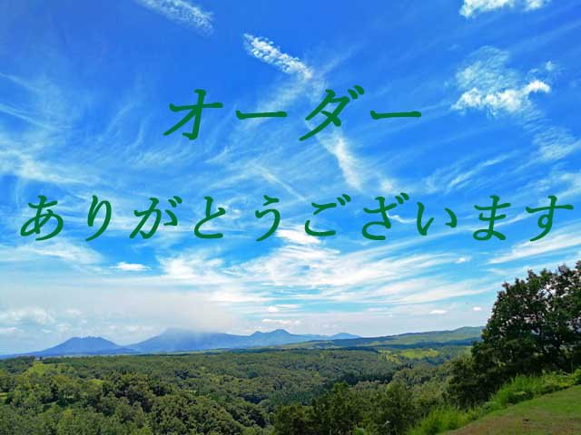 【U様変更手数料マクラメネックレス】