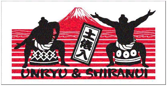 大相撲 土俵入りバスタオル
