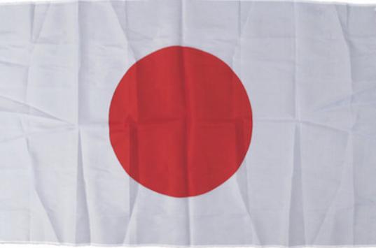 日の丸 国旗(大)90×155