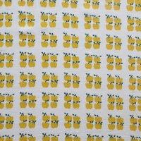 北欧ファブリック/ミニ青リンゴ 67×45/切売り