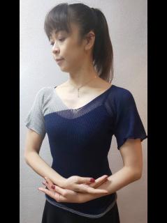バイカラートップス(半袖)
