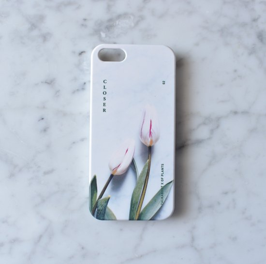iPhone SE - CLOSER white tulip phone case(TALKABOUT x OF PLANTS)