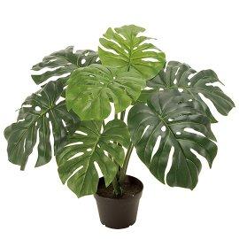 観葉植物 モンステラポット50cm アーティフィシャルフラワー