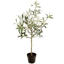 観葉植物 オリーブポット実付きミニ70cm アーティフィシャルフラワー