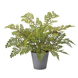 観葉植物 アジアンタムポット30cm アーティフィシャルフラワー