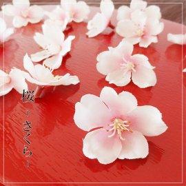 桜-14輪-