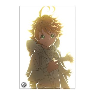 <img class='new_mark_img1' src='https://img.shop-pro.jp/img/new/icons14.gif' style='border:none;display:inline;margin:0px;padding:0px;width:auto;' />【2021年9月中旬出荷予定】約束のネバーランド ビジュアルアクリルプレート A