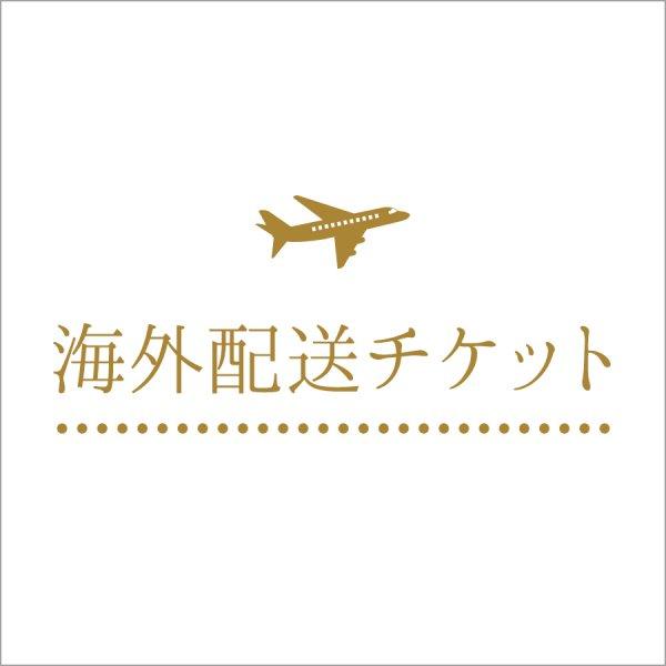 ◇海外配送チケット│EMS(国際スピード郵便)