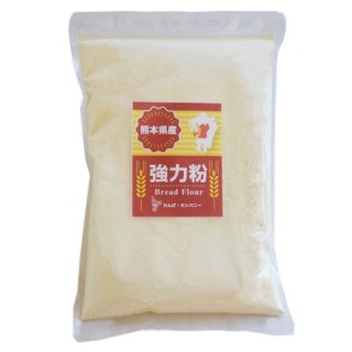 熊本県産小麦粉[強力粉](500g)