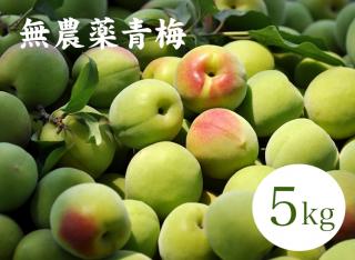 【4月限定20%引き】無農薬 南高梅5kg 予約販売