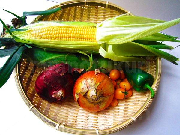 夏野菜 トウモロコシ(とうもろこし)トマト(黄色) ピーマン  タマネギ(玉ねぎ 玉ネギ 紫)写真