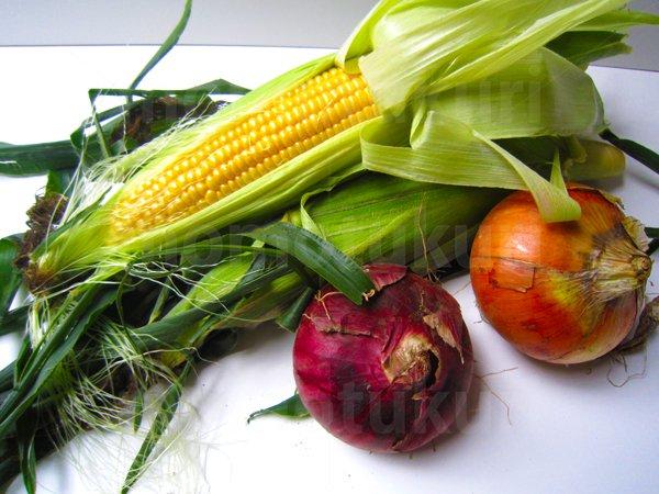 夏野菜 トウモロコシ(とうもろこし)タマネギ(玉ねぎ 玉ネギ 紫)写真