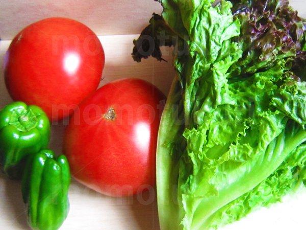 夏野菜 トマト ピーマン サニーレタス 写真
