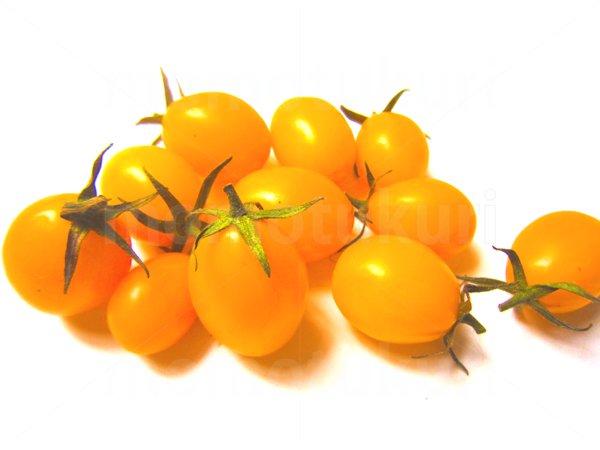 夏野菜 トマト(黄色) 写真