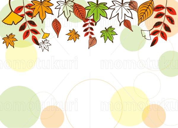 紅葉 もみじ  いちょう ナンテン 落ち葉 カエデ 背景  6