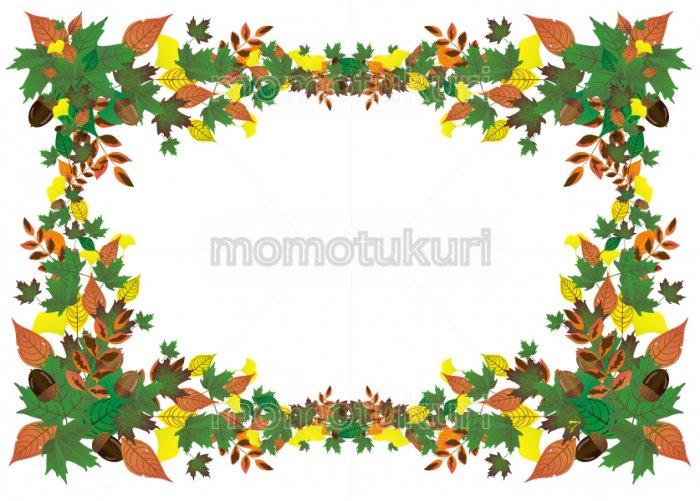 紅葉 もみじ  いちょう ナンテン 落ち葉 カエデ どんぐりの 背景 フレーム   レトロデザイン