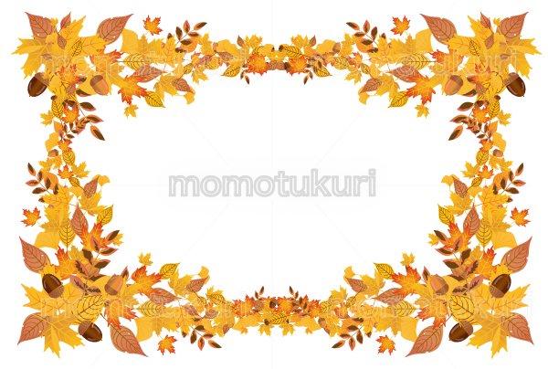 紅葉 もみじ  いちょう ナンテン 落ち葉 カエデ どんぐりの 背景 フレーム   レトロデザイン  ハガキ 横  3