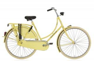 【gazelle】  Basic R3T G51 (Solar yellow)