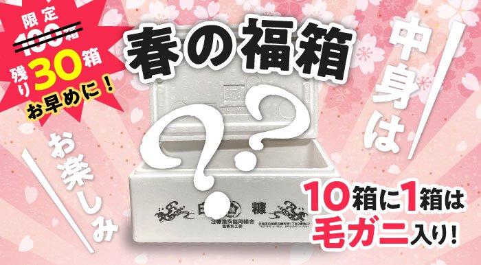 春の福箱【送料無料/消費税込】