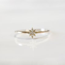 Stardust  Diamond Ring | K10YG