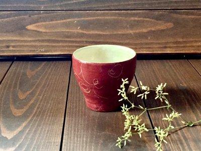 松本伴宏さんの赤巻カップ(信楽)
