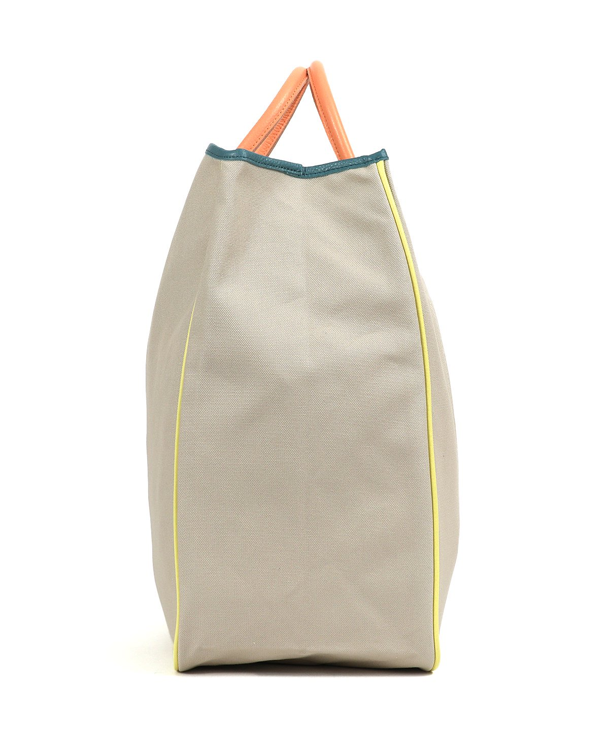 CANVAS CARRYALL TOTE MULTI