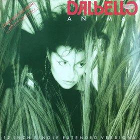 Dalbello / Animal (12