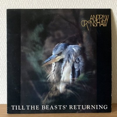 <img class='new_mark_img1' src='https://img.shop-pro.jp/img/new/icons50.gif' style='border:none;display:inline;margin:0px;padding:0px;width:auto;' />Andrew Cronshaw / Till The Beasts' Returning