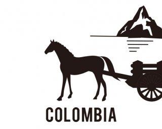 コロンビア アルセニオ ムニョス ピンクブルボン アナエロビックウォッシュド