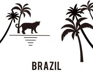 ブラジル セラダス アララス モギアナ パルプドナチュラル
