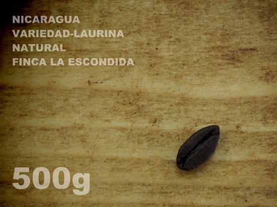 ニカラグア ヴァリエダ-ローリナ ナチュラル エスコンディーダ農園 【500g】
