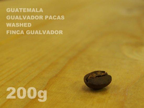 グァテマラ グァルバドル パカス ウォッシュド グァルバドル農園 【200g】