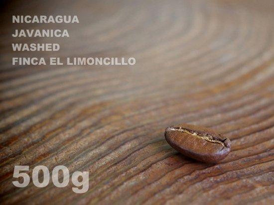 ニカラグア ジャバニカ ウォッシュド リモンシリョ農園 【500g】